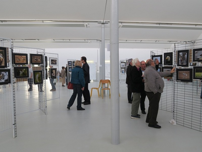 sheds-exposition-francois-bresson3